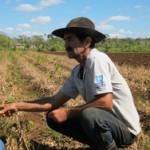 <!--:en-->Cuba Shares Its Experiences in Agroecology<!--:--><!--:es-->Fruticultura ecológica para las islas<!--:-->