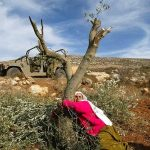 <!--:en-->Resistance is Fertile: Palestine's Eco-War<!--:-->