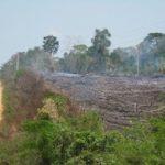 <!--:en-->Forest-Dependent Communities Lobby for End of REDD+<!--:-->