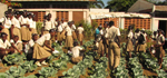 Haitian_Gardening_students_sm