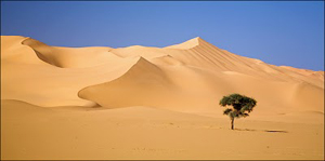 chad_desert