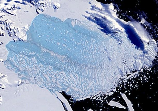 Antarctica-d
