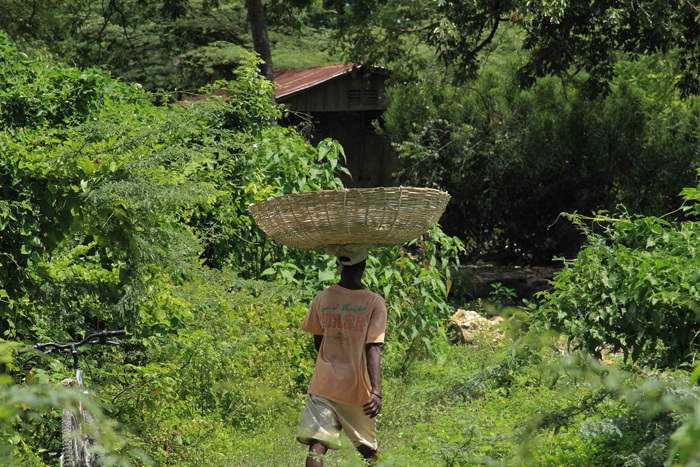 RonSavage-Haiti-a